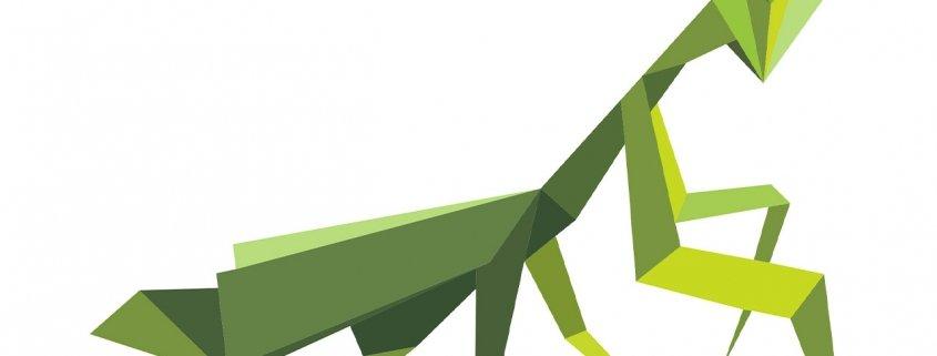 Vector graphic of praying mantis