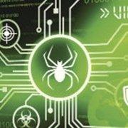 Spider graphic on green background